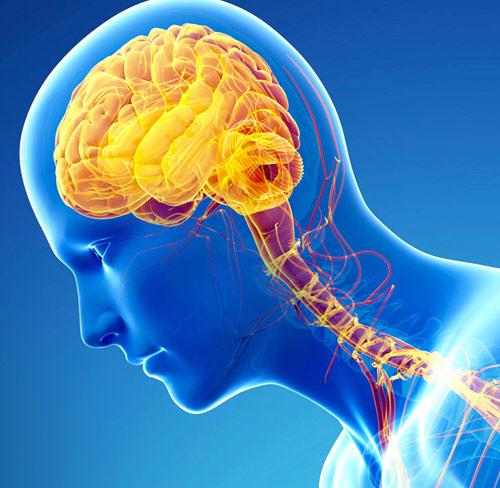Deep Brain Stimulation Procedure: A Deep Insight